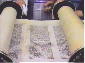 Torah and Commandments by Rav Aryeh Carmell O.B.M.