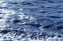 Rav B. Horovitz on Water